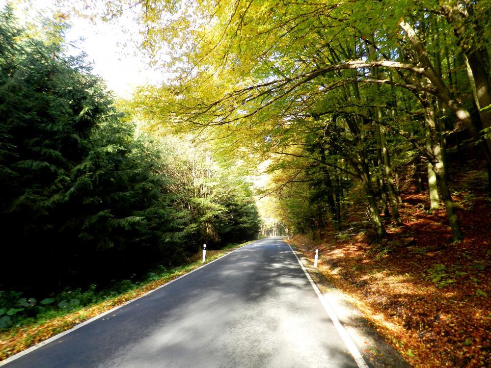 Cesta na Bozeňov