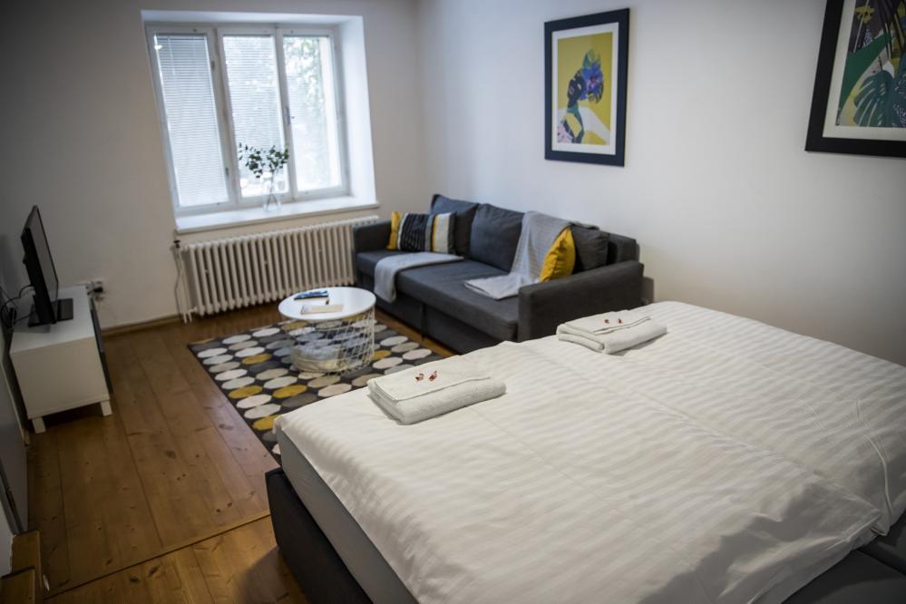 ložnice+obývák