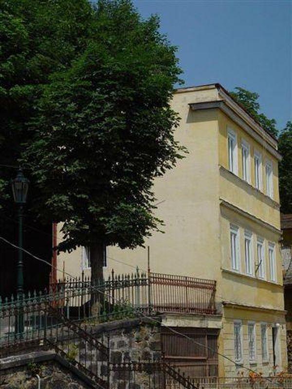 Villa Zlatý Jelen