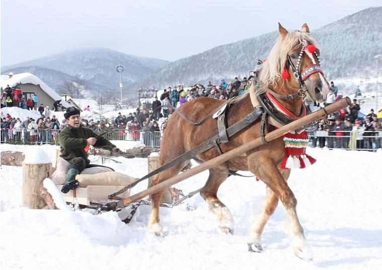 Tradičné preteky gazdovských koní