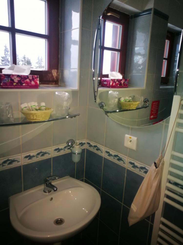 Standard Double (koupelna)