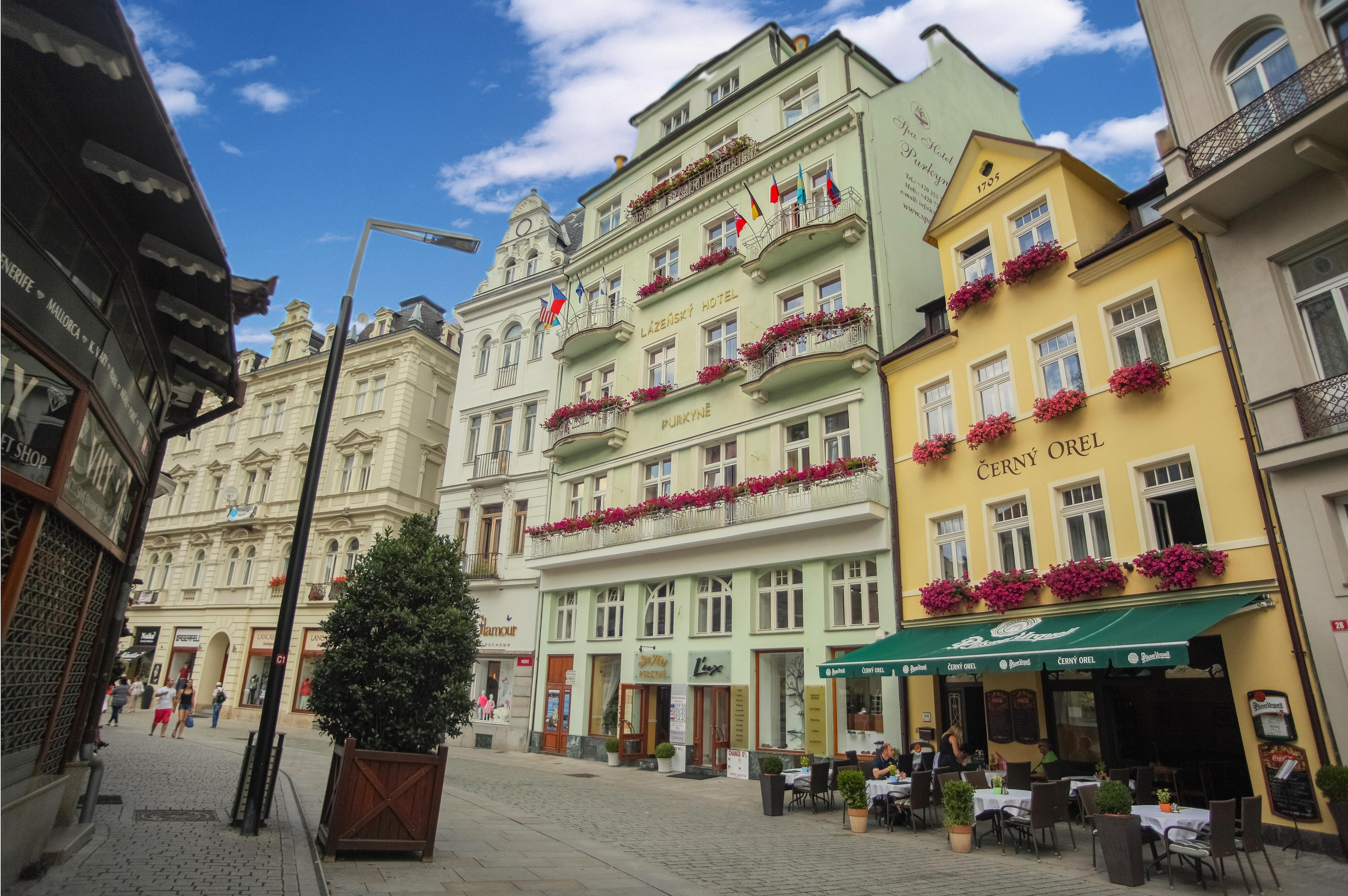 Lázeňský hotel PURKYNĚ