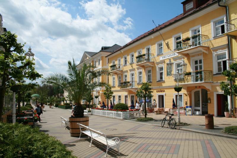 Boutique & Spa Hotel Tři lilie