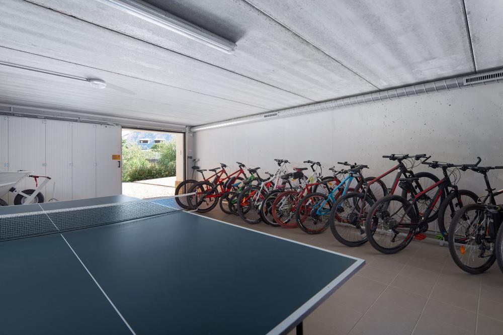 Stolní tenis, horská kola