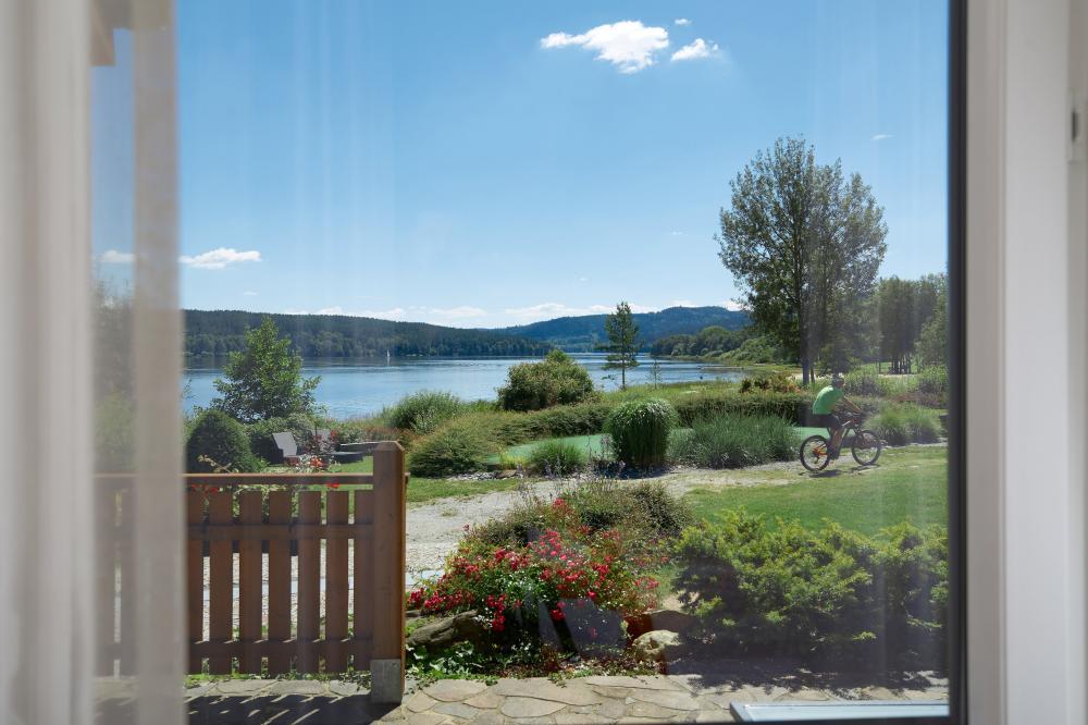 Výhled z okna do zahrady