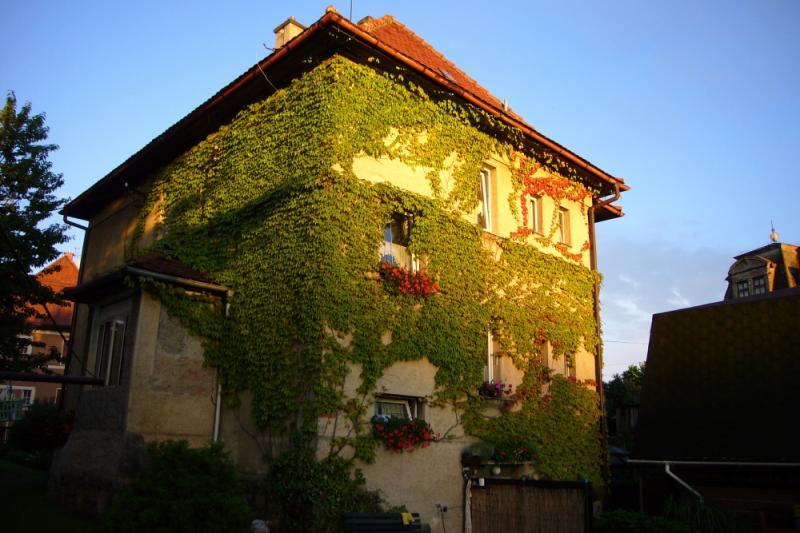 pohled na dům majitele penzionu