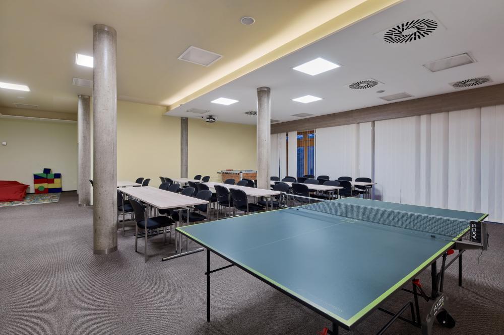 Ping Pong - Wellness hotel Říčky