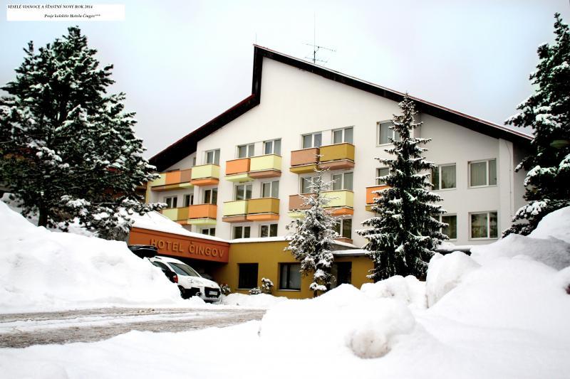 Hotel v zime