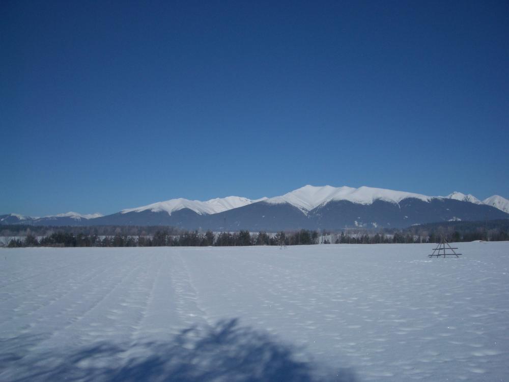 Baranec v zime