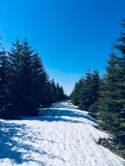 Krusne hory jaro 2019