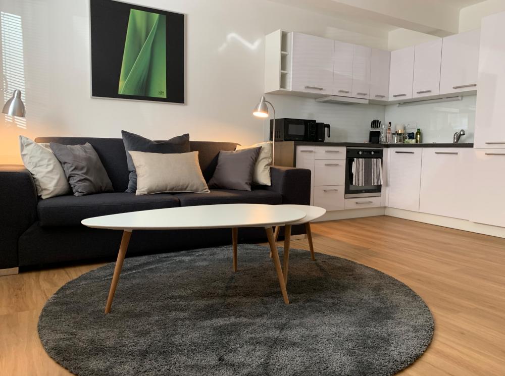 AP4U - Hradec Apartments