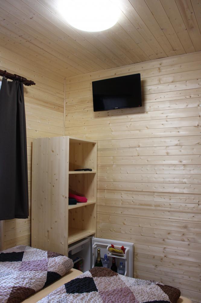 Televize a minibar v dvoulůžkovém pokoji