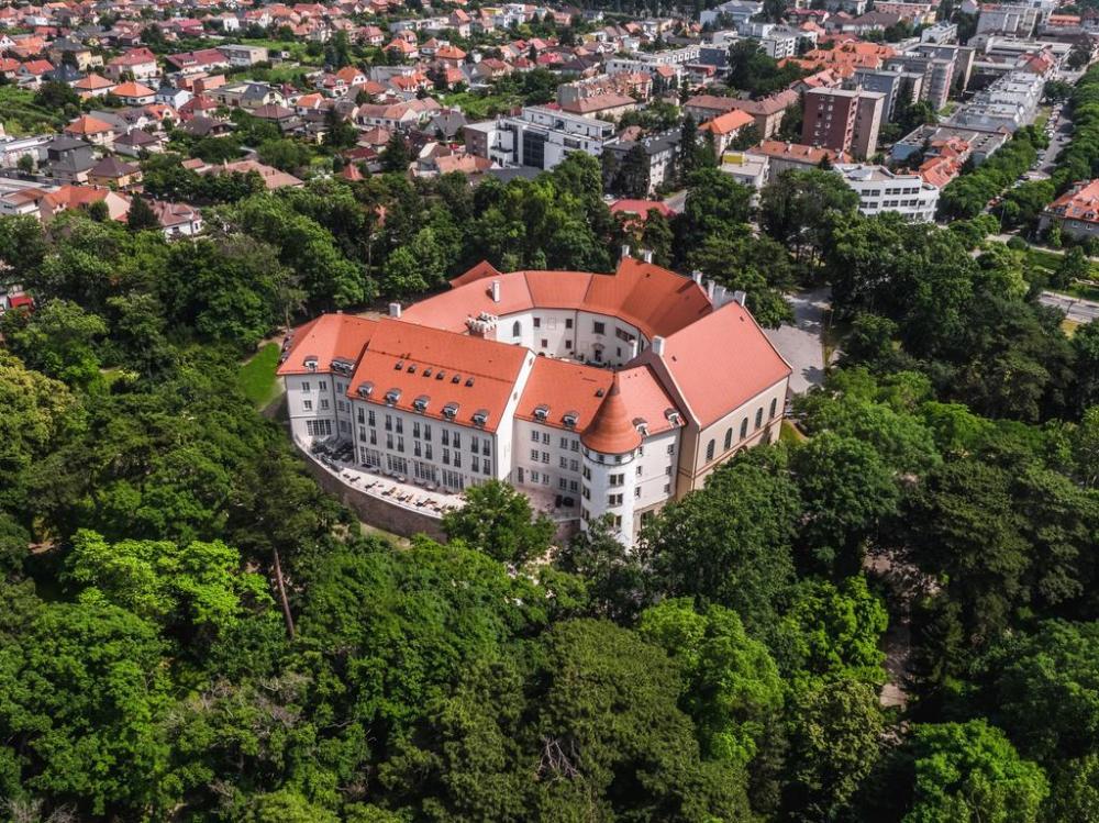 Palace Art Hotel Pezinok ****