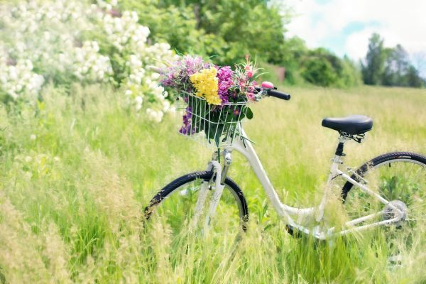Cyklisté vítáni!