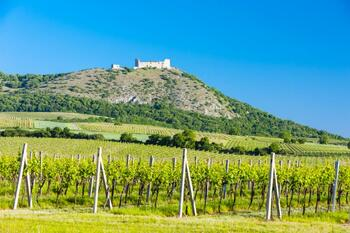 Summer holidays in South Moravia (4 nights)