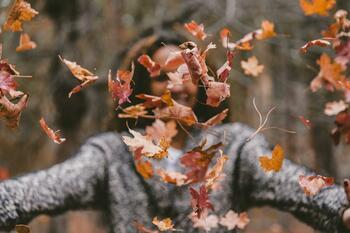 Nabitý hřejivý podzim na Vysočině