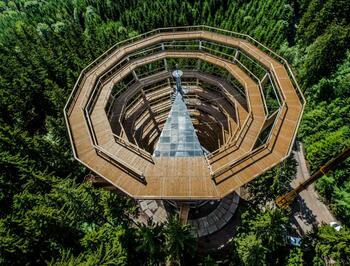 Stay with new Tree Top Trail in Janske Lazne