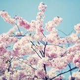 Jarní mimovíkendový relax