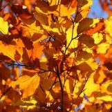 Autumn minirelax holiday