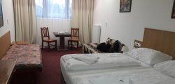 rodinný - *** Hotel Astra accommodation Spindleruv Mlyn