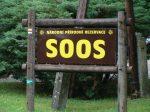 Přírodní rezervace SOOS - Ubytování Františkovy Lázně – Hotel Zátiší – OFICIÁLNÍ WEB