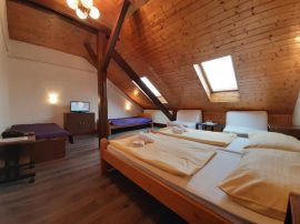 Accommodation Praha Holesovice - Hotel Olga