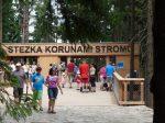 Lipno - stezka v korunách stromů - Ubytování Český Krumlov - Penzion Hotel Krásné Údolí Český Krumlov