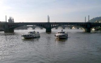 Tarponi v brzkém ránu proplouvají Prahou - SP Praha s.r.o.