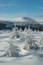 Zimní pohled na Sněžku - Horský penzion ČERNAVA