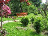 Zahrada - Penzion Jasmín